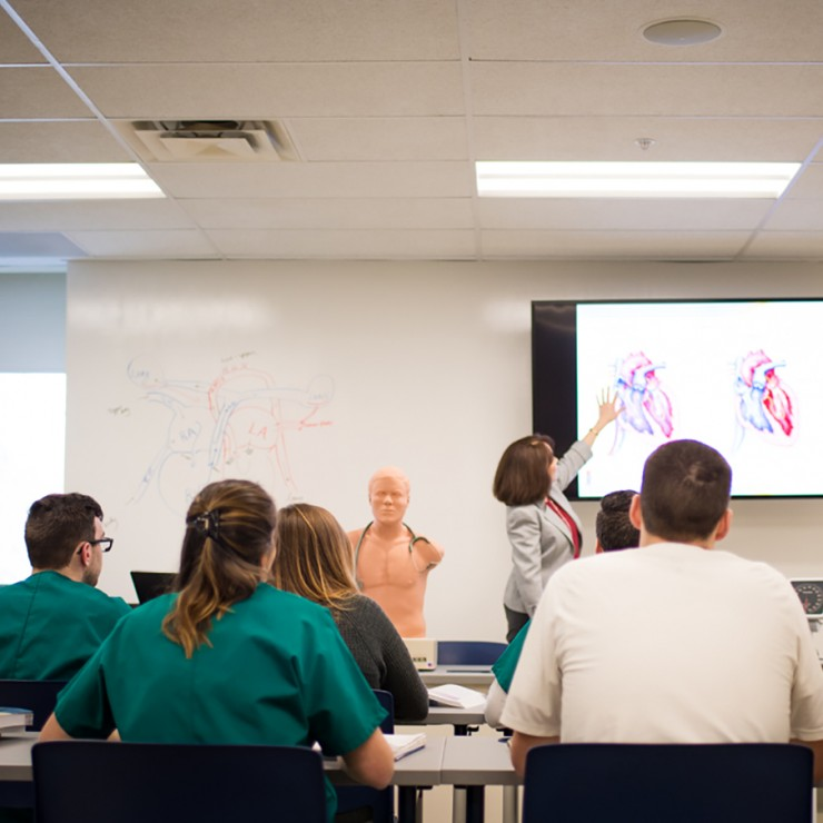 Health Professions | Siena College